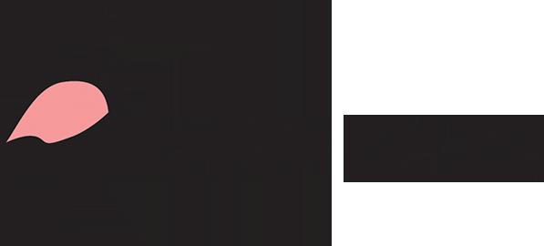 Flamingo Firenze